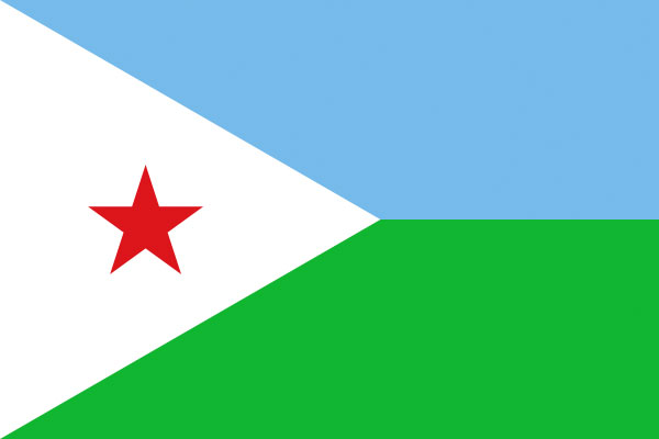 The Djibouti flag
