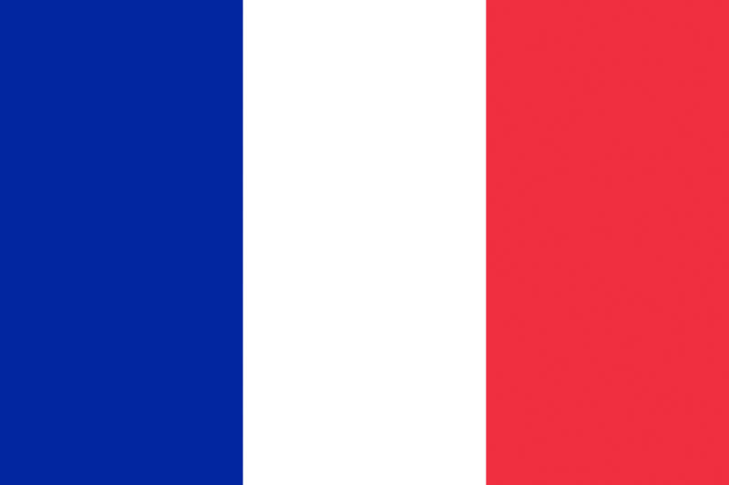 The flag of Mayotte is simply the French flag.